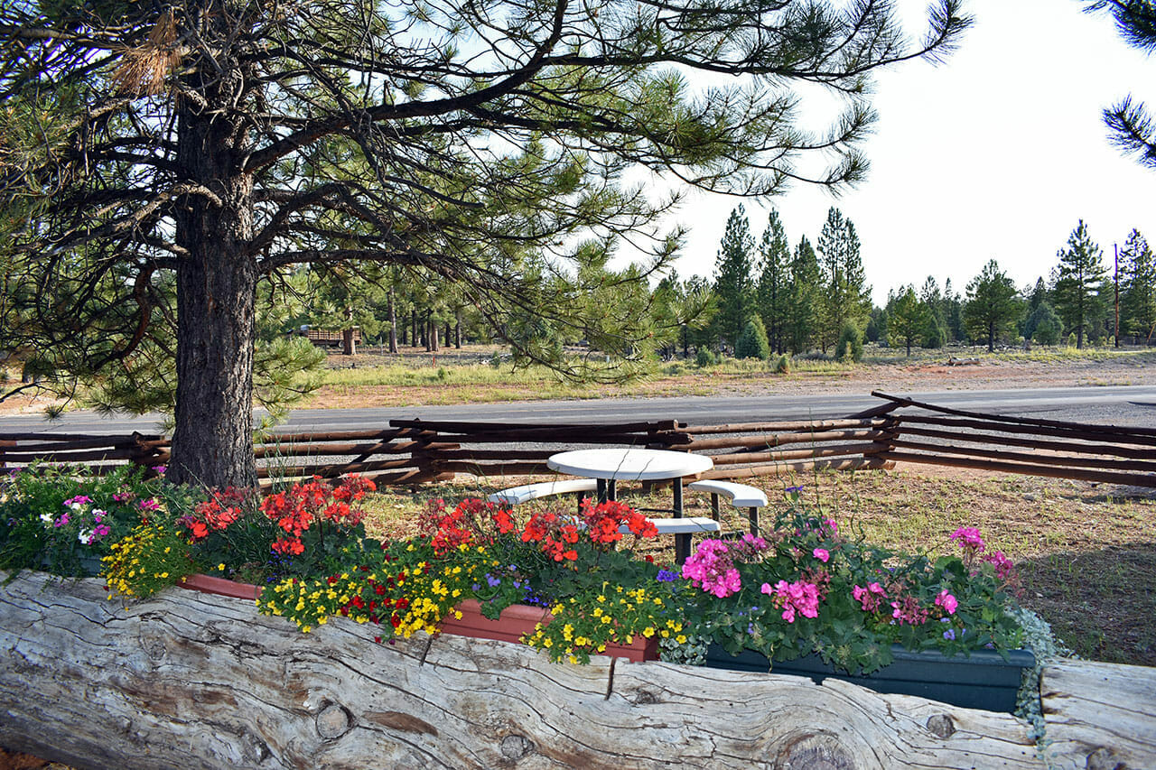 Picnic area at Bryce Canyon Pines Resort Motel